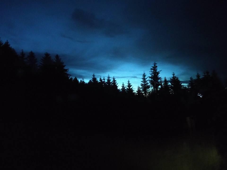 Black Forest night